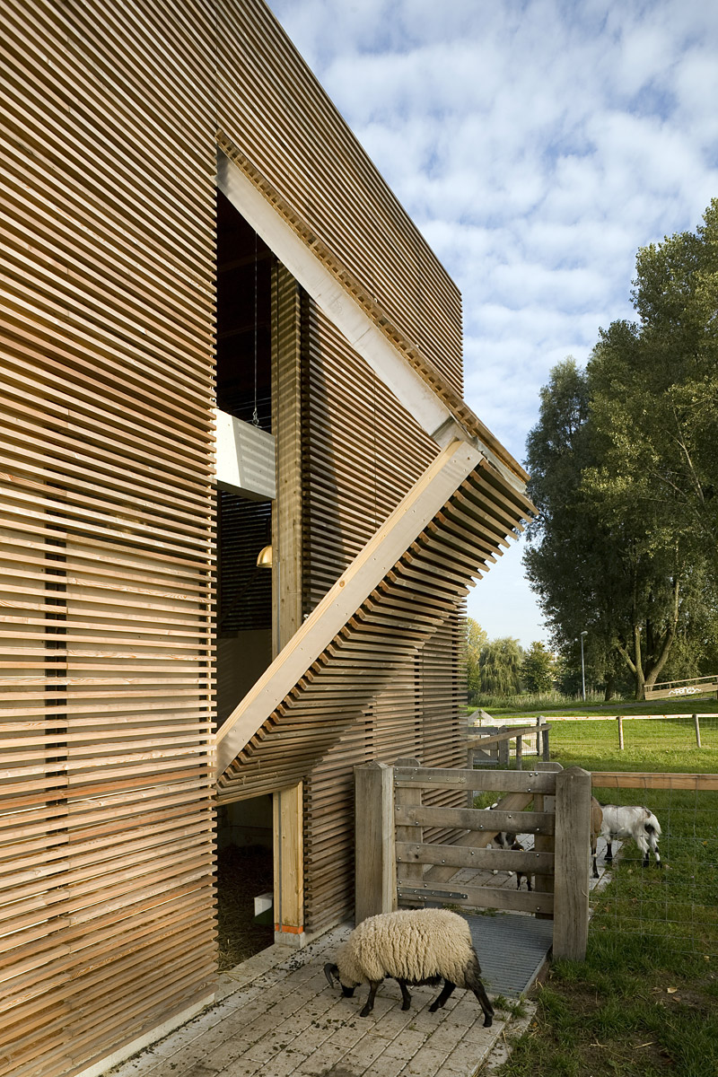 Showcase petting farm features archinect